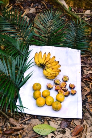 Bananen, Orangen und Passionsfrucht