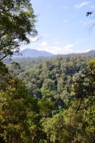 Campsite, Gunung Leuser Nationalpark