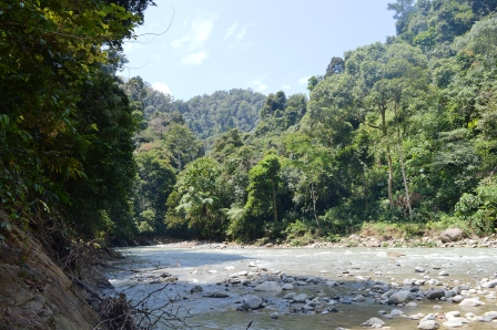Jungle-Trekk, Gunung Leuser Nationalpark