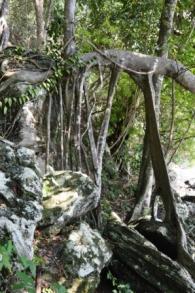 Pulau Weh