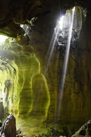 Bat Cave, Bukit Lawang